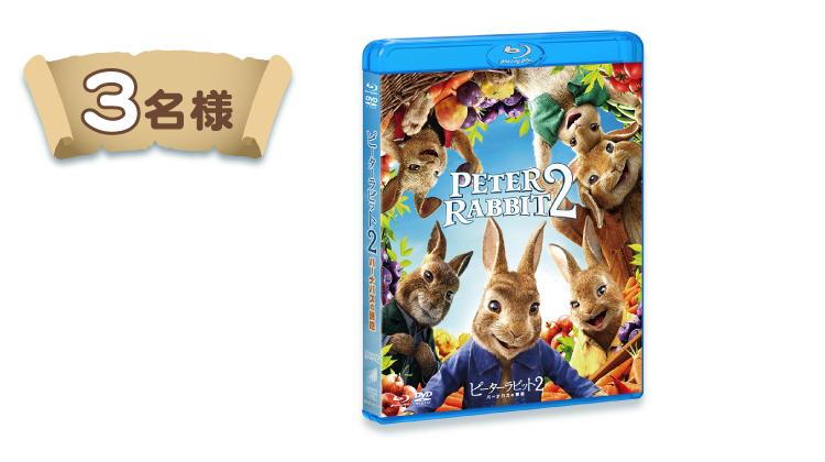 『ピーターラビット2/バーナバスの誘惑』ブルーレイ&DVD